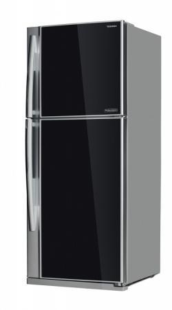 Двухкамерные холодильники TOSHIBA